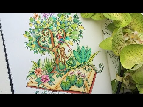 Magical Jungle Coloring Book | A Jungle Book (part II) | Selva ...