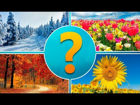 4 Картинки 1 Слово Увлечение Уровень 61-90
