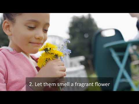 How to Get Your Child Interested in Gardening?