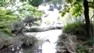 Dr Sun Yat  Sen  Gardens Vancouver, British  Columbia,  Canada  walk around