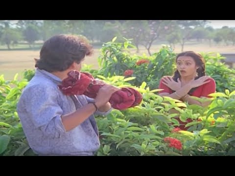 Nagarjuna removed Amala saree and selling...