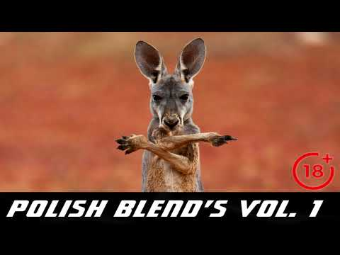 POLiSH BLEND'S VOL. 1 [ MIX BY FSN ]