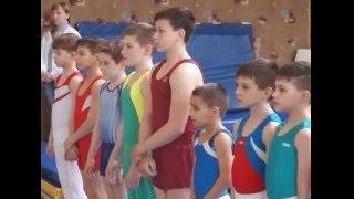 Первенство Ростовской области по спортивной гимнастике