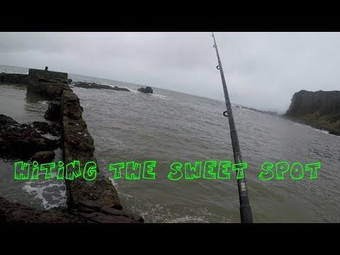 Fishing At Arbroath At The Sweet Spot