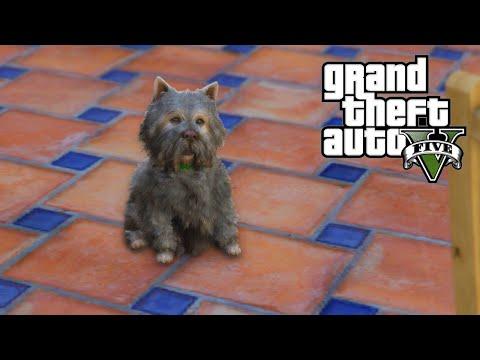 GTA 5 - Hunting Rare & Dangerous Animals - Whales, Stingrays, Poodles Gameplay! (GTA V PS4 Next Gen)