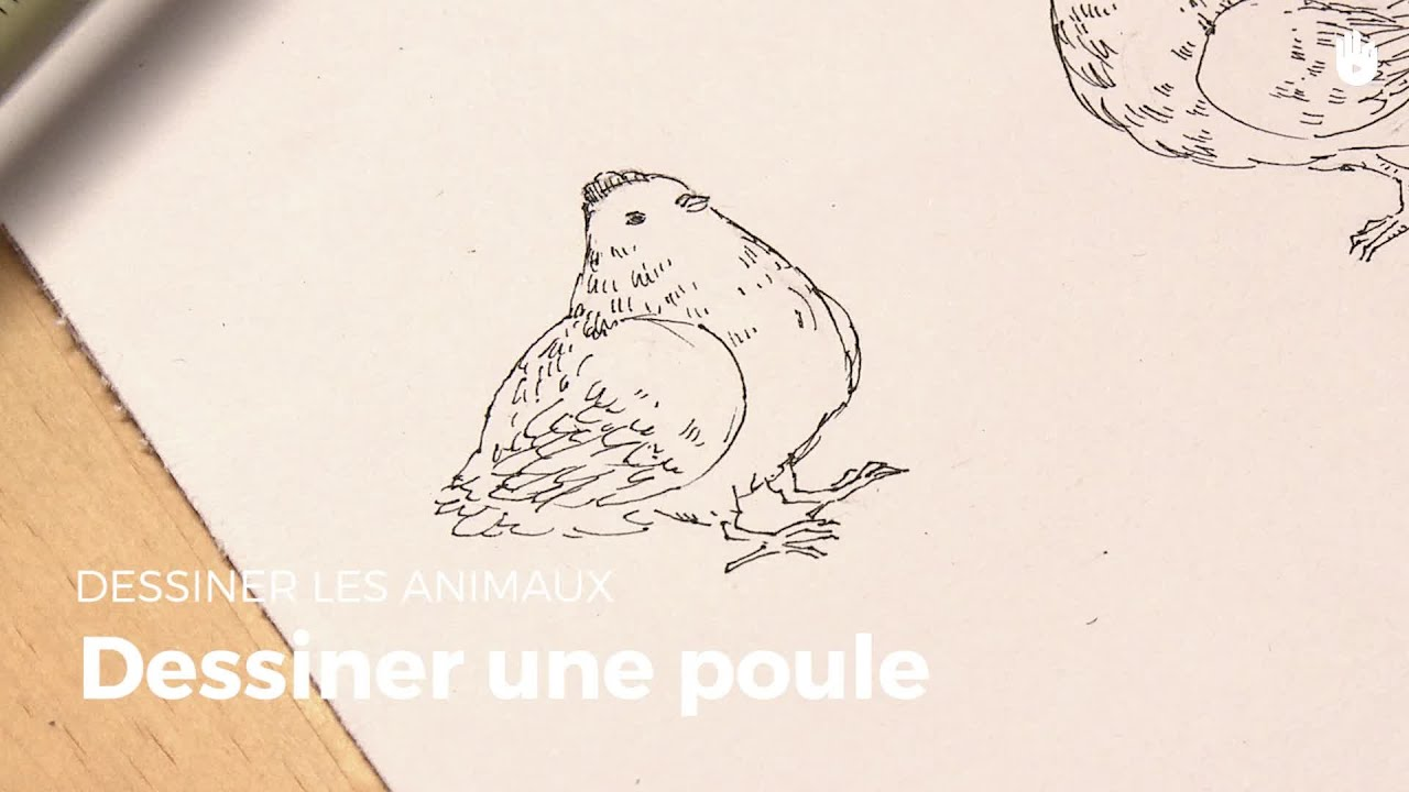 Exceptionnel Dessiner Une Poule | Apprendre à dessiner - YouTube OX95