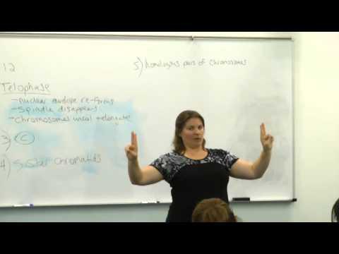 Broward College North Campus | Prof. Eisenberg BSC1005 review Nov 30