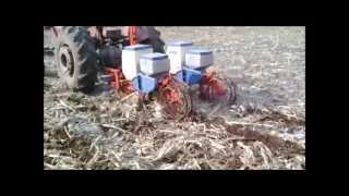 Plantando milho na Palhada