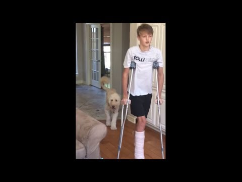 None - VIDEO: Dog Perfectly Imitates Owner On Crutches By Limping