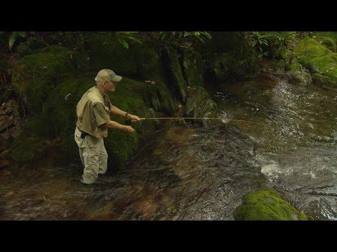 Wild SideTV-Rocky Fork Trout
