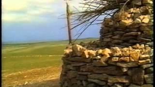 Na mongolskim stepie