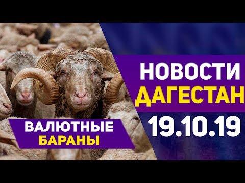 Новости Дагестана за 19.10.2019 год