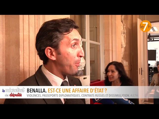 Le microtrot des députés. L'affaire Benalla : est-ce une affaire d'état ?