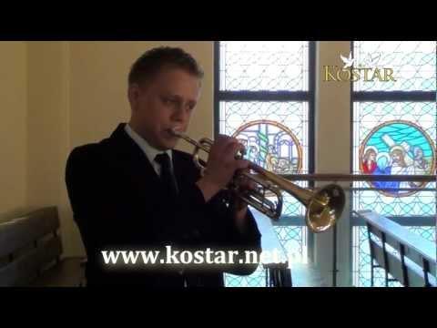 Trąbka Na ślub Śląskie - Zespół Na Wesele Śląsk - Zespół Muzyczny - Orkiestra Weselna