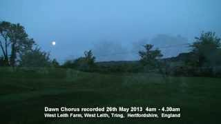Birdsong Dawn Chorus  England 26th May 2013