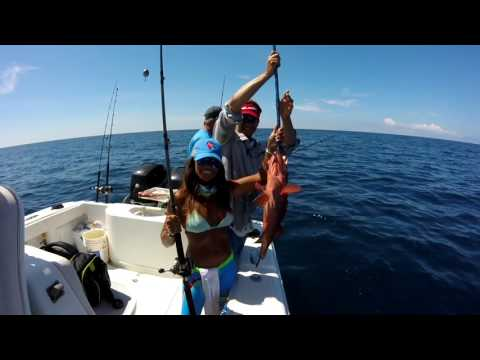 Apalachicola Offshore Fishing in a 36'  Yellowfin.