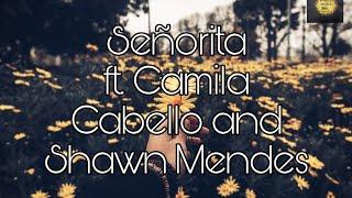 Senorita lyrics video