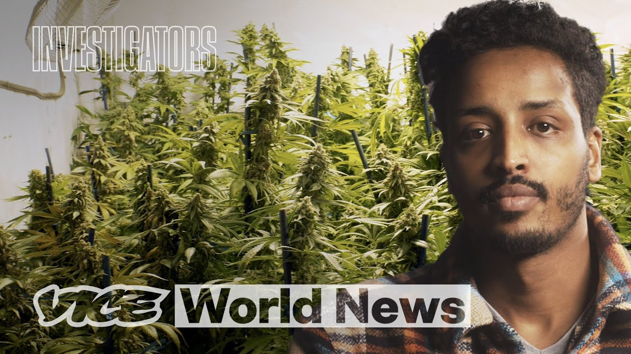 I Exposed How Child Slaves Grow Weed