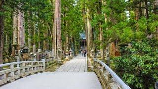 金剛峯寺 奥の院 高野山 和歌山 世界遺産 / Kongobu-ji Temple Okunoin Wakayama World Heritage