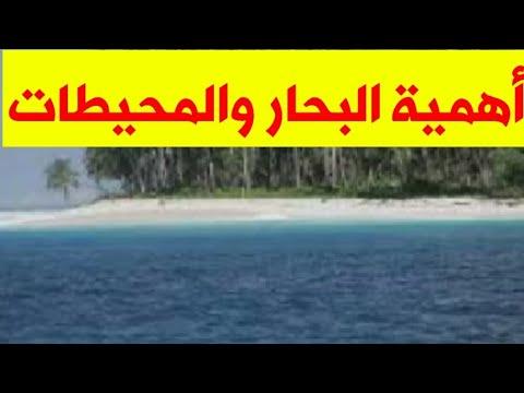 ما أهمية البحار والمحيطات Youtube