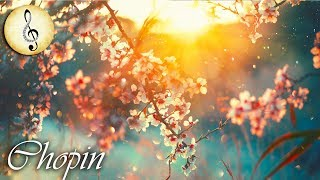 Chopin Classical Music for Studying and Concentration   Study Music Piano Instrumental