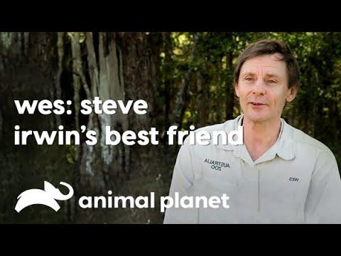 Wesley Mannion - Carrier Of Steve Irwin's Legacy   स्टीव इरविन की विरासत का वाहक