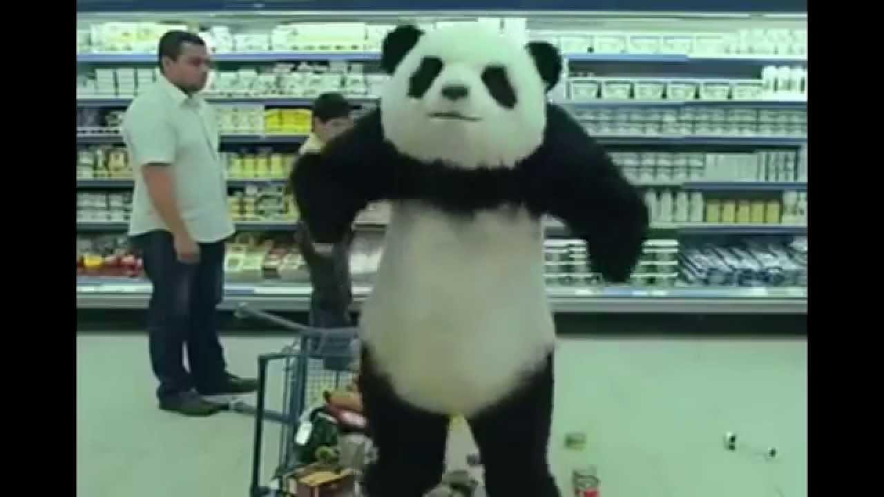 Oso panda bailando more videos on linecamscom - 5 10