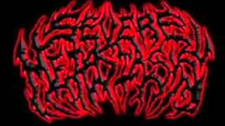 Severe Metastasis - Burned to Ashes
