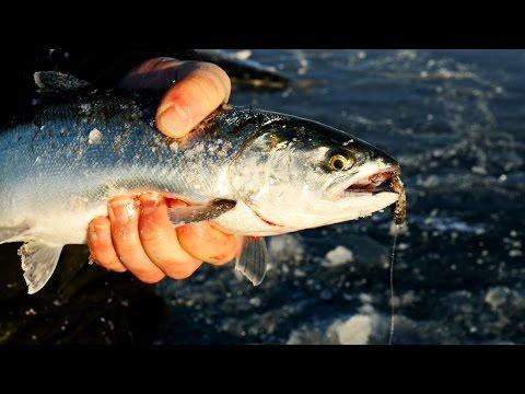 """Slammin' Superior Salmon"" In Depth Outdoors TV, Season 9, Episode 15"