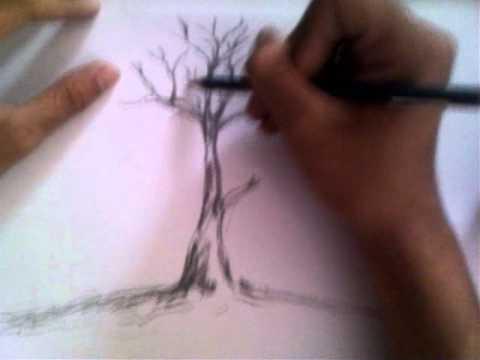 vẽ đơn giản