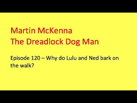 Episode 120 Does your dog bark non-stop on the walk?