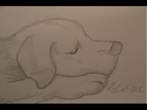 Super Trauriger Hund [Bleistift-Zeichnung] [HD] - YouTube &ZP_66