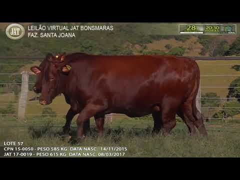 LOTE 057
