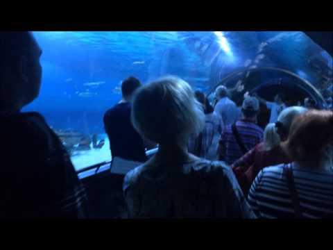 Tropicarium Oceanarium Budapest
