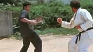 Martial arts Bruce Lee