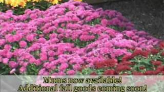 Cooperland Farms - Clermont NY - TV Spot  2007