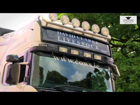 TRANSPORT - DAVID CLARKE LIVESTOCK
