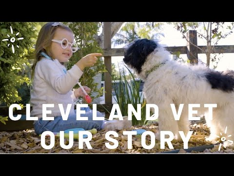 Cleveland Veterinary Clinic   Our Story