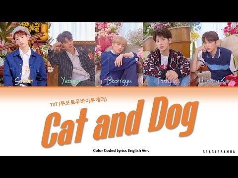 txt-(투모로우바이투게더)---cat-&-dog-(english-ver.)-color-coded-lyrics