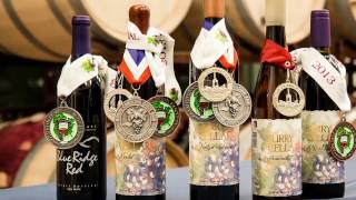 viticulture and enology at surry community college