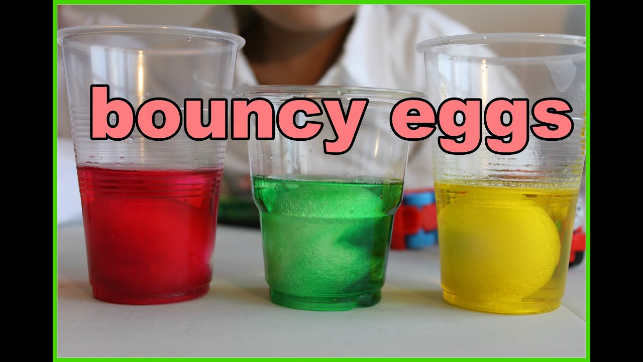 How to Make Bouncy Eggs Fun and Easy Science Experiment for Kids by ...