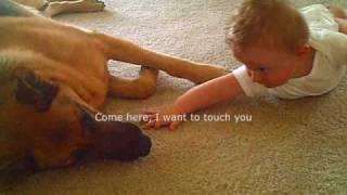 Big German Shepherd Loving A Little Baby (in Loving Memory 9/19/03 - 9/23/08)