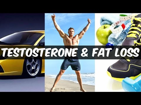 How Testosterone Affects Fat Loss: Real Science of Low-T | Thomas DeLauer