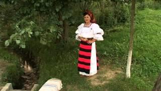 Ancuta Anghel - Pana-i verde frunza-n codru - petrecere la moroseni 3