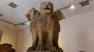 Lion Capital of Ashoka At Sarnath Archaeological Museum Near Varanasi India