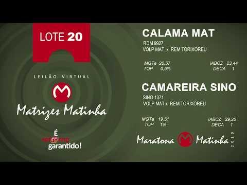LOTE 20 Matrizes Matinha 2019