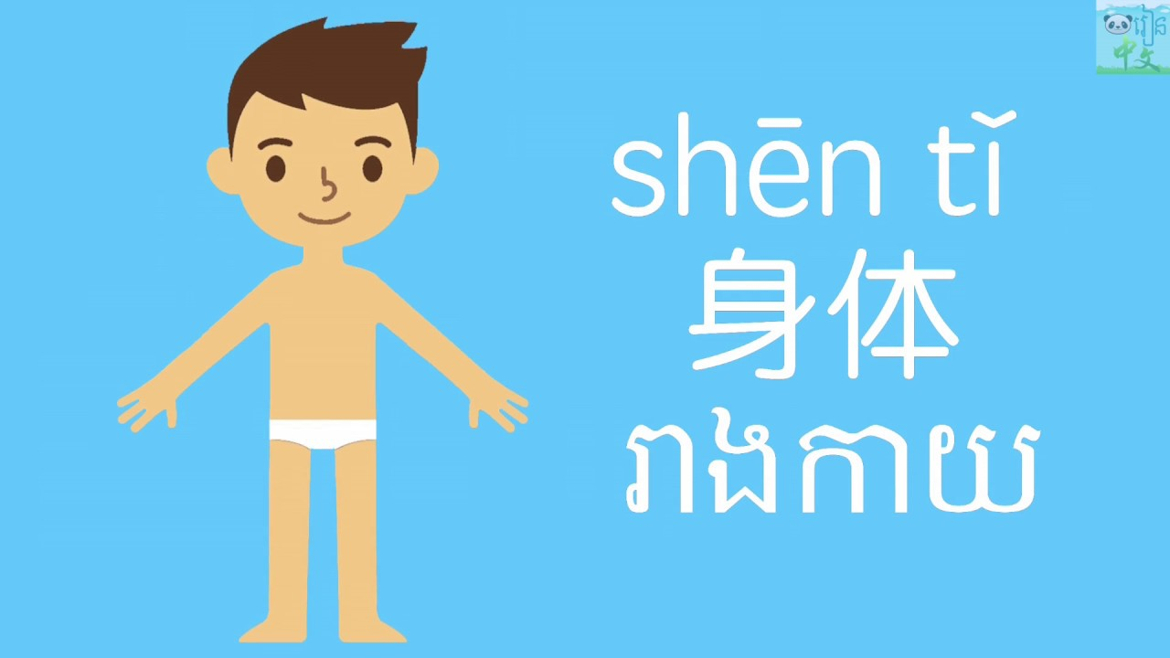Learn Chinese -រៀន中文- 身體 រាងកាយ Body - YouTube