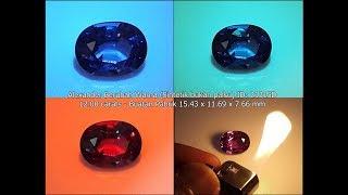Safir Change Color ditawarkan ke Hotman Paris Rp500 Trilyun...