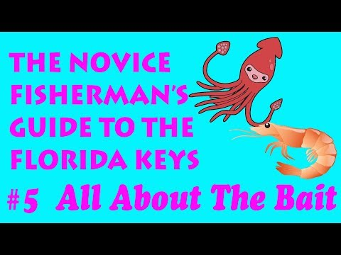 The Novice Fisherman's Guide To The Florida Keys #5 - All About The Bait.