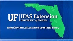 The Florida We Know - UF IFAS Extension Ag Agents